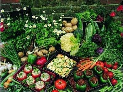 鹤山蔬菜配送